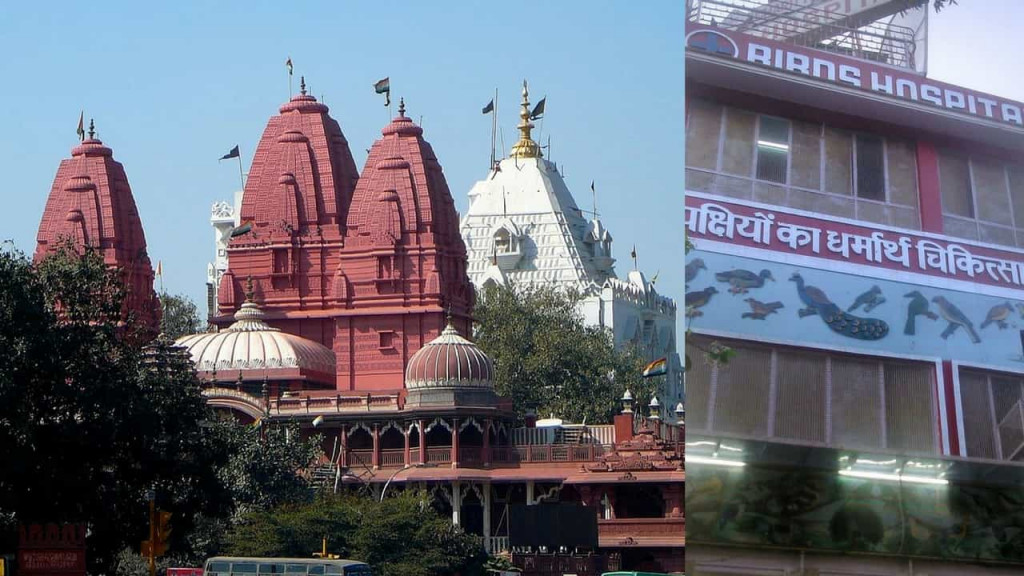 Lal Mandir and Birds Hospital