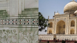 Why Taj Mahal is turning Yellow and Green? – These are the reasons