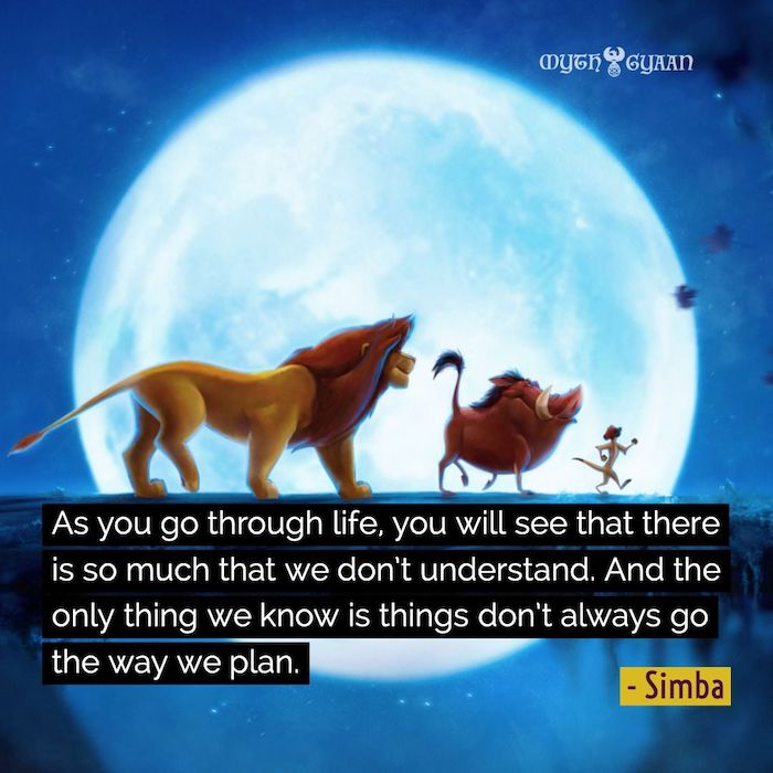 As you go through life, you will see that there is so much that we don't understand. And the only thing we know is things don't always go the way we plan. - Simba Lion King Quotes