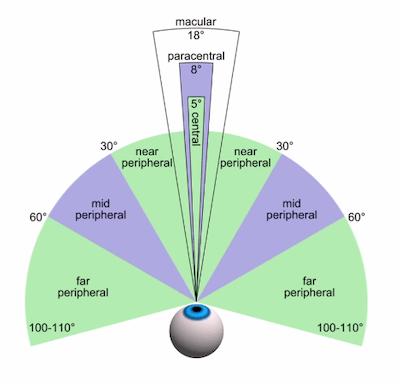 Lateral Peripheral Vision